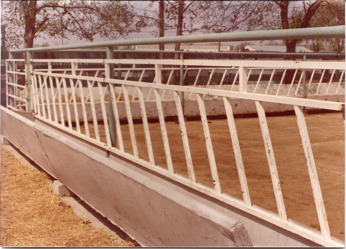 Wls continuous fence feeder panels mounting clips baanklon Choice Image